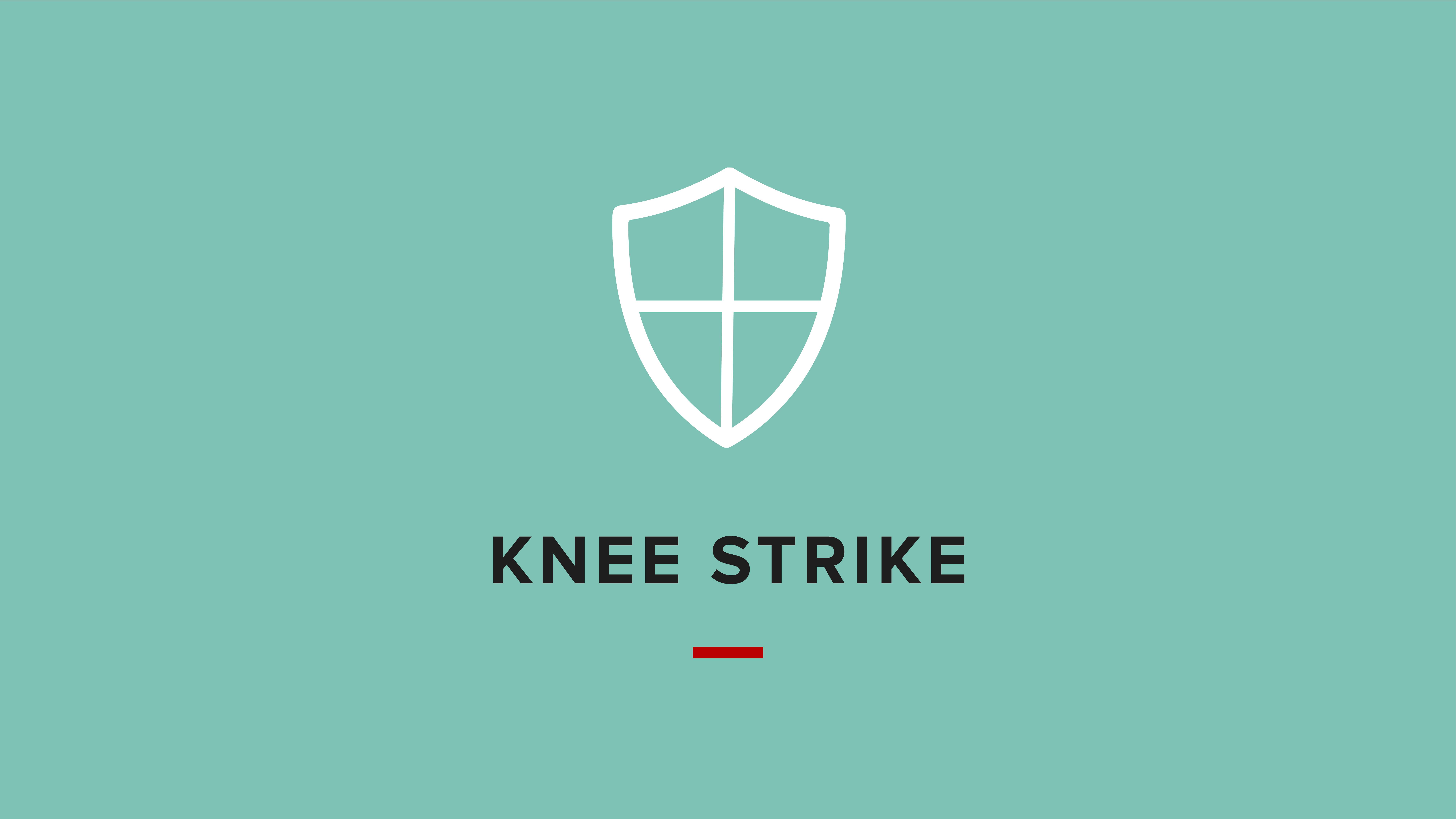 Icon for knee strike self defense video
