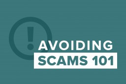 "graphic showing ""avoiding scams 101"""