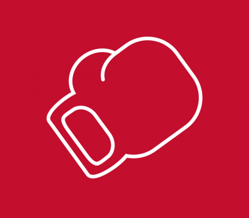 icon graphic of a boxing glove